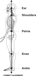 Anatomically aligned posture - standing